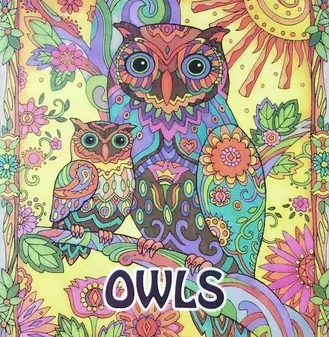Secret Garden OWLS 2016 New An Inky Treasure Hunt and Coloring Book