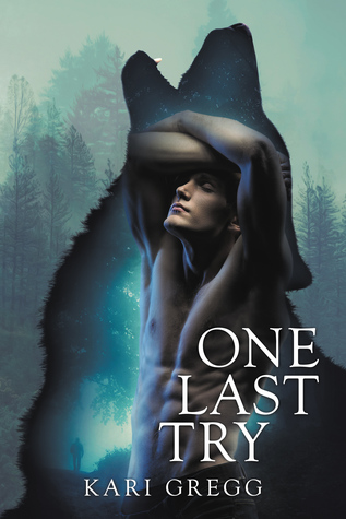 Book Review: One Last Try by Kari Gregg