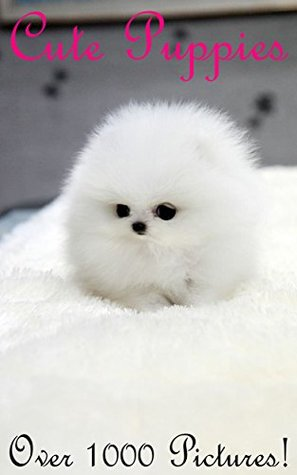cute puppy pictures 2017 cutest most adorable fluffy little faces