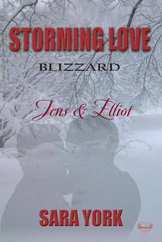 Jens & Elliott (Storming Love: Blizzard #1)