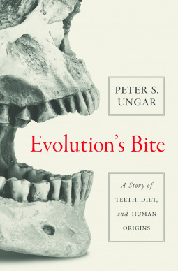 Evolution's Bite: A Story of Teeth, Diet, and Human Origins