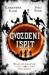 Gvozdeni ispit (Magisterium, #1)