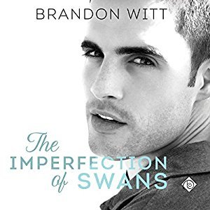 Audio Book Review: The Imperfection of Swans by Brandon Witt (Author) and Krit Graves (Narrator)