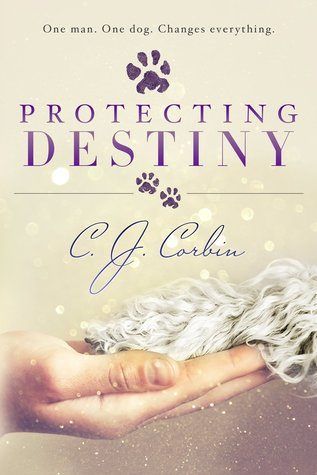Protecting Destiny PDF Download