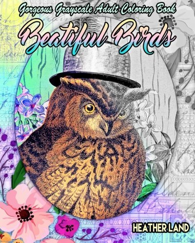 Beautiful Birds: Grayscale Vintage Adult Coloring Book