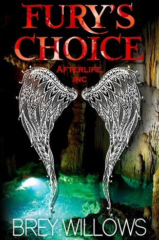 Fury's Choice (Afterlife Inc., #2)