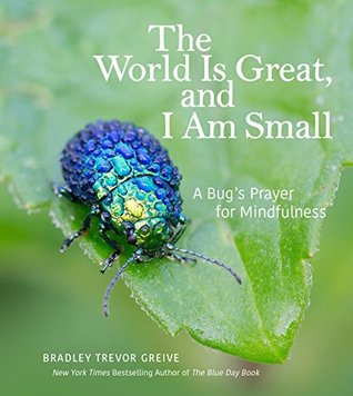 The World Is Great, and I Am Small: A Bugs Prayer for Mindfulness