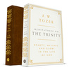 Meditations on the Trinity: Beauty, Mystery, and Glory in the Life of God
