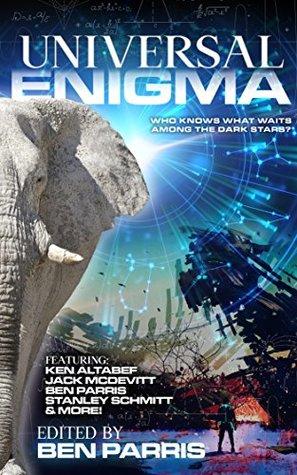 Universal Enigma (Drastic Measures Anthology #3)