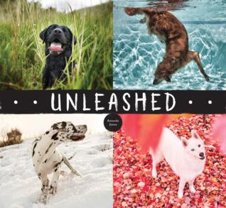 Unleashed par Amanda   Jones