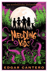 Book cover for Meddling Kids (A Blyton Summer Detective Club Adventure)