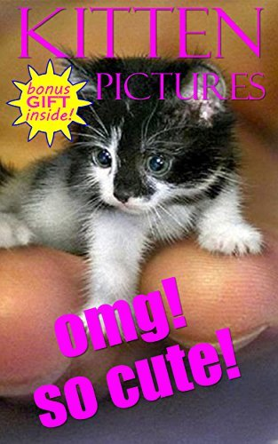 OMG! KITTEN PICTURES FOR KIDS!: 1000+ PICTURES OF THE CUTEST ANIMALS