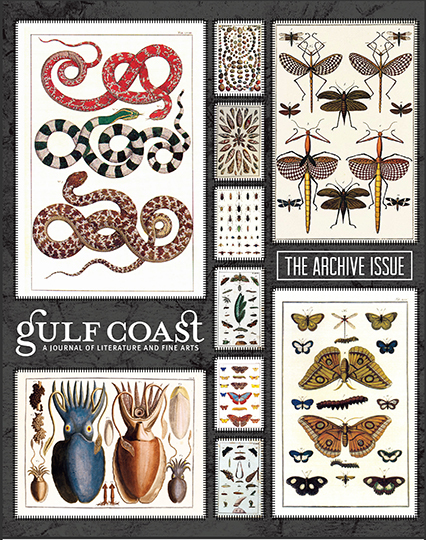 Gulf Coast: A Journal of Literature and Fine Arts (Summer/Fall 2016)