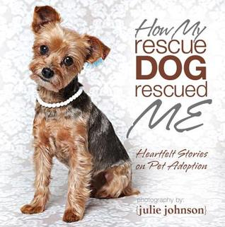 How My Rescue Dog Rescued Me