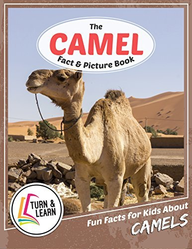 The Camel Fact and Picture Book: Fun Facts for Kids About Camels