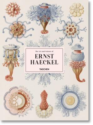 The Art & Science of Ernst Haeckel
