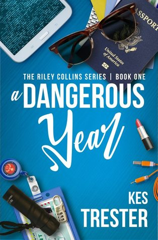 A Dangerous Year (The Riley Collins, #1)