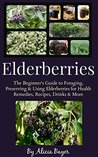 Elderberries by Alicia Bayer