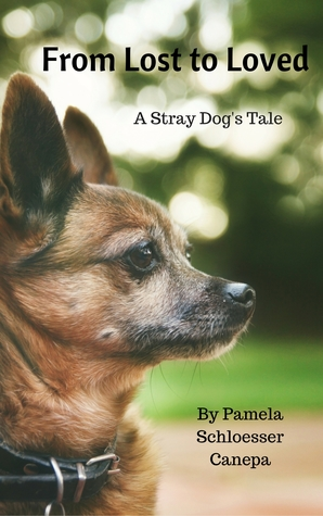 From Lost to Loved, A Stray Dog's Tale