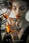 Lies Of A Shadow (The Mirror Souls Series #2)