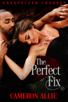 The Perfect Fix (Unexpected Changes, #3)