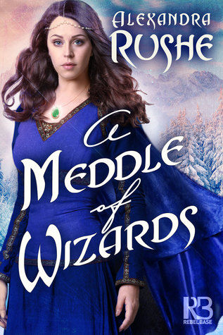 A Meddle of Wizards (Fledgling Magic #1)