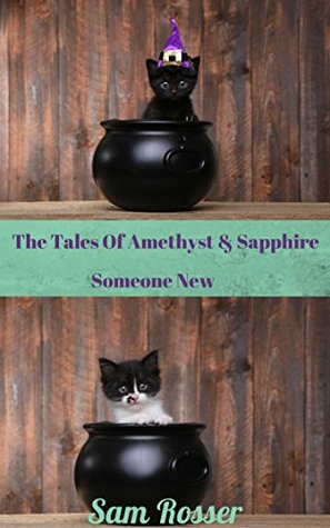 The Tales Of Amethyst & Sapphire: Someone New