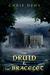 The Druid & the Bracelet by Chris Dews