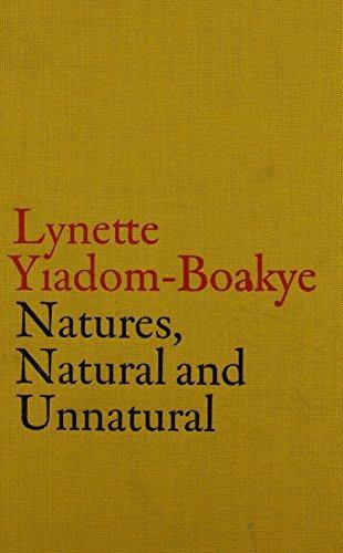 V-A-C Collection: Lynette Yiadom-Boakye