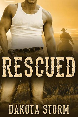 Recent Release Review: Rescued by Dakota Storm