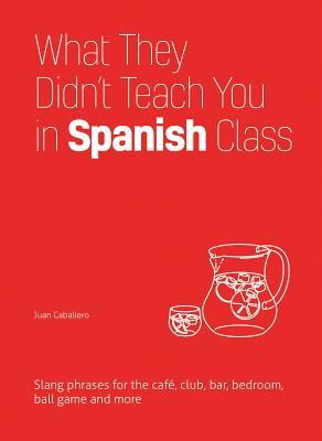 What They Didn't Teach You in Spanish Class: Slang Phrases for the Cafe, Club, Bar, Bedroom, Ball Game and More
