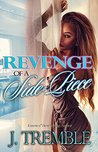 Revenge of a Sidepiece: The Novel