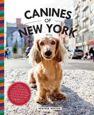 Canines of New York par Heather Weston