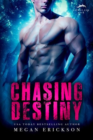 Duo Release Day Review:  Chasing Destiny (Silver Tip Pack #2) by Megan Erickson