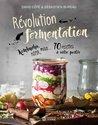 Révolution fermentation: Kombucha, kéfir, miso... 70 recettes à votre portée