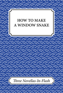 How to Make a Window Snake: Three Novellas-In-Flash