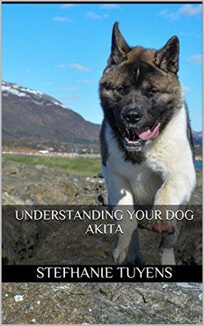 Understanding Your Dog Akita