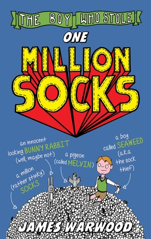 The Boy Who Stole One Million Socks