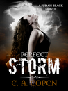 Perfect Storm (Judah Black Novels, #1.5)