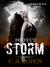 Perfect Storm (Judah Black Novels, #1.5)