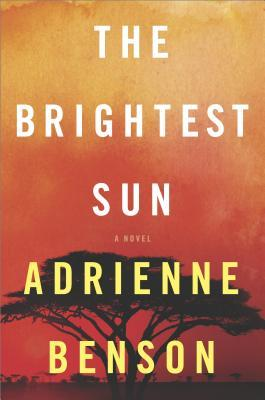 https://www.goodreads.com/book/show/35135020-the-brightest-sun?ac=1&from_search=true