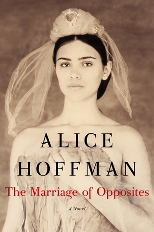 Image result for The marriage of opposites : a novel