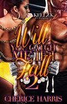 Will You Catch Me If I Fall 2 by Cherice Harris