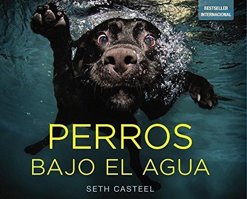 Perros bajo el agua / Underwater Dogs