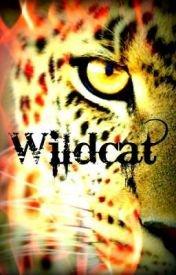 Wildcat (Silent Heroes, #1)