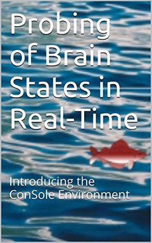 Probing of Brain States in Real-Time: Introducing the ConSole Environment