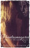 Phantasmagoria: Mists of Metamorphosis