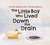 The Little Boy who Lived Down the Drain by Carolyn Huizinga Mills
