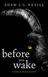Before You Wake: Three Horrors