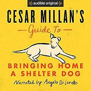 Cesar Millan Ebook Deutsch